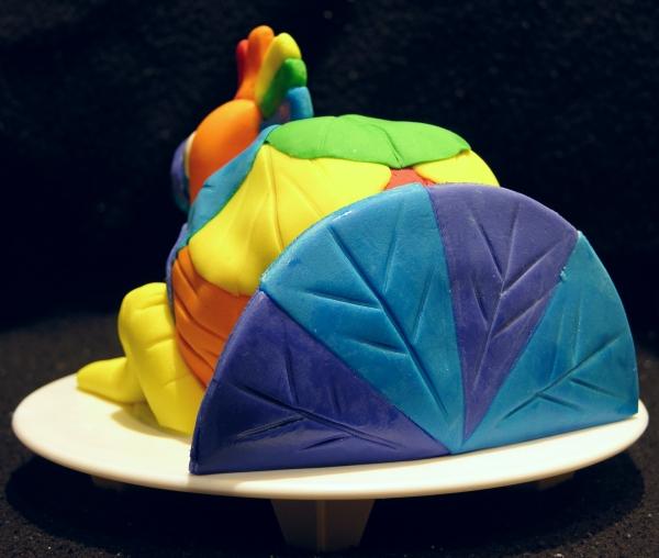 Rainbow Turkey 4
