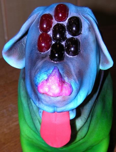 Dog Cake - Face Detail