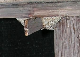 Falcon - Detail 4