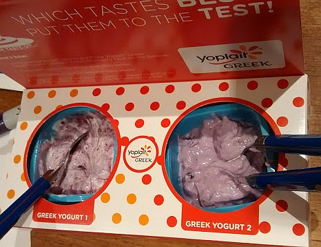 The Wallaby Greek Blueberry Yogurt is on the left, the Yoplait Greek Blueberry Yogurt is on the right.